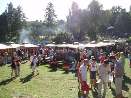 Festiwal Smaku w Grucznie (2010)