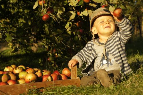 Francuskie dzieci mają więcej swobody / fot.  Steffen Sameiske
