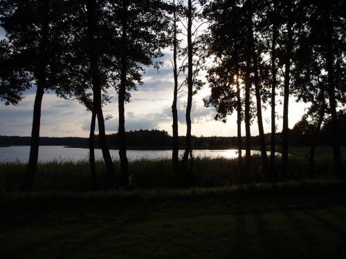 Las i jezioro