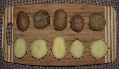 5 odmian ziemniaka poddawanych testowi