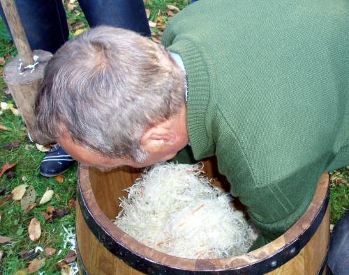 Kiszenie kapusty - napełnianie beczki