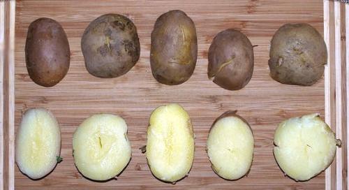 Kilka odmian ziemniaka