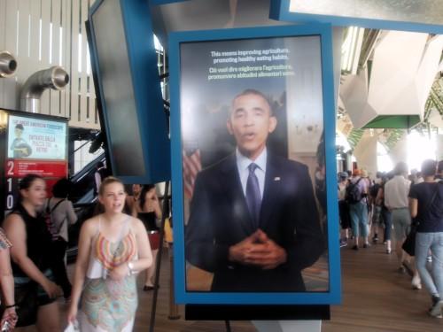 Expo 2015, wystawa USA