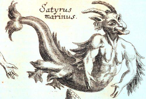 Satyrus marinus - potwór z morza, źródło wszelkiego zła na talerzu hipstera