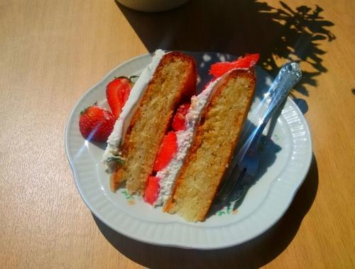 Tort Mszalny