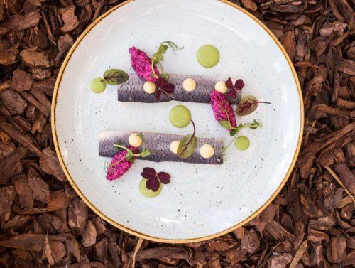 Restauracja Zafishowani, śledzik marynowany, sałatka z buraczków, mus jabłkowy, sos z zielonej pietruszki (fot. I. Kowalska)