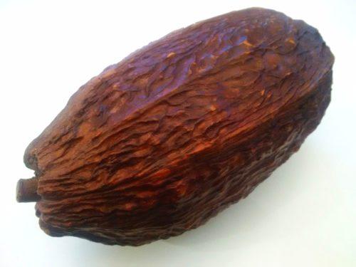Kakaowiec - owoc