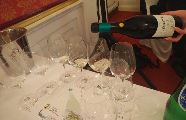 MGM Mondo del Vino – Itinera Prima Classe